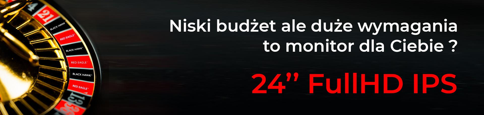 """24"""" FullHD IPS  Niski budżet ale duże wymagania, to monitor dla Ciebie?"""